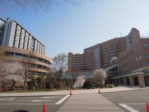 大蔵5丁目1K賃貸アパート周辺施設国立成育医療研究センター病院・成育しせい保育園